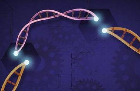 CRISPR基因编辑疗法对人类疗效首次证明,是否长期安全,效果仍有待观察|总编辑圈点