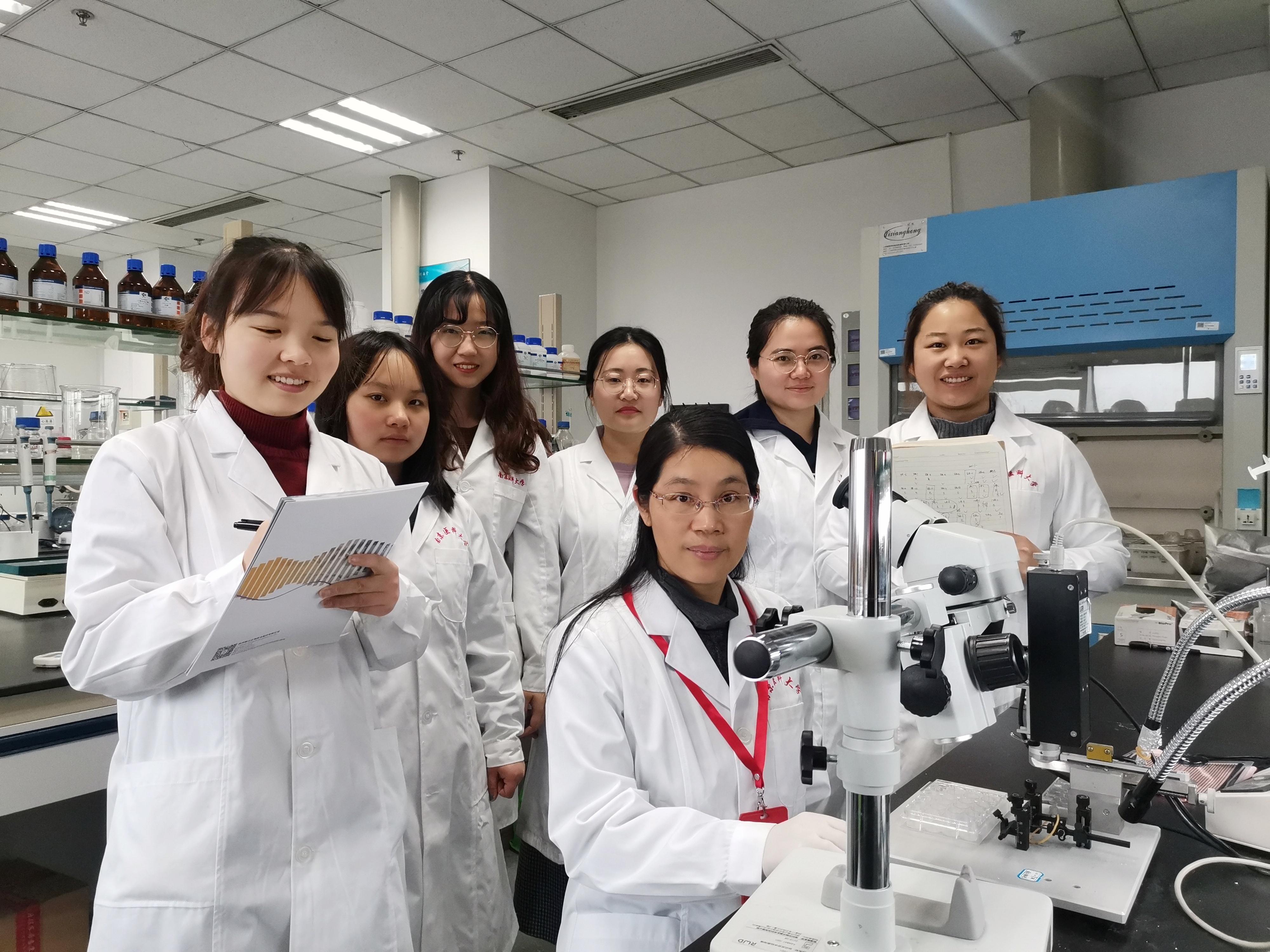 南京医科大发现脑血管内皮细胞功能异常可以诱发自发性癫痫