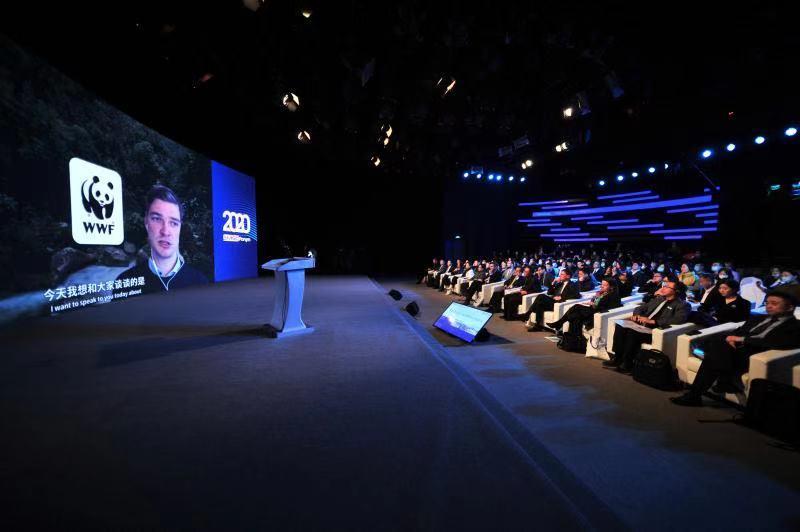 2020可持续矿产供应链国际论坛在京开幕