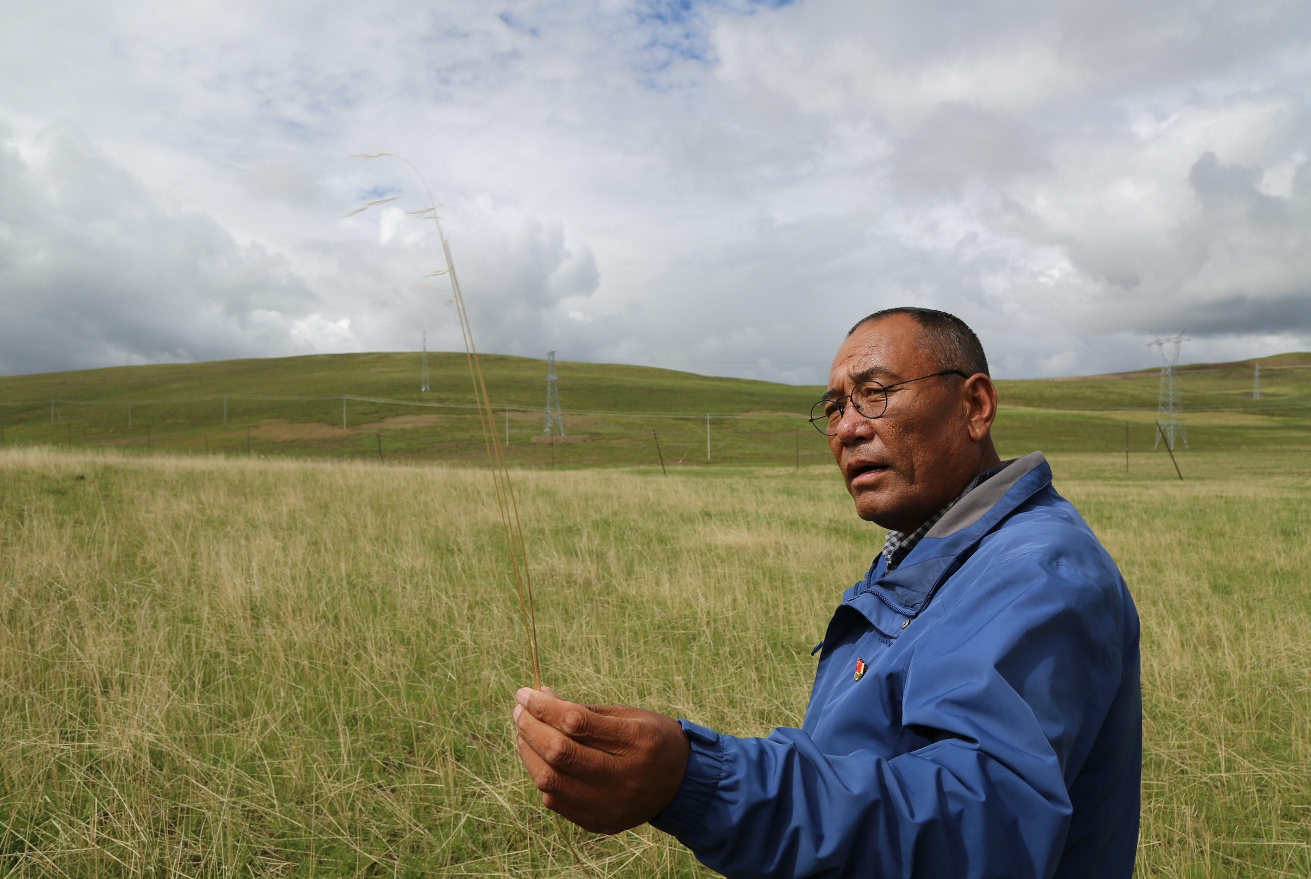 40年,他让黑土滩变绿草原