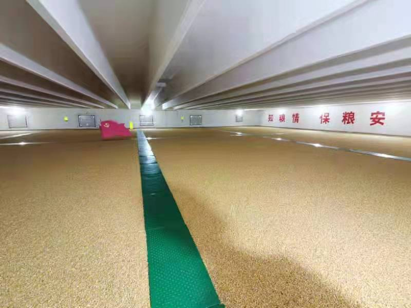中储粮:科技储粮 筑牢粮食安全屏障