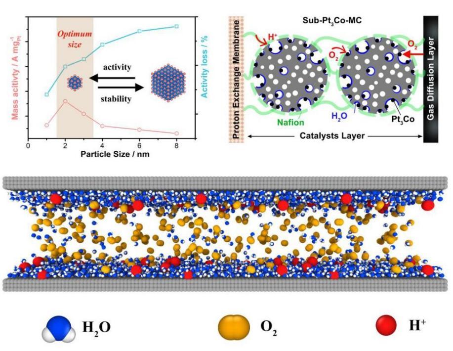 超小尺寸铂基电催化剂实现了高性能表达