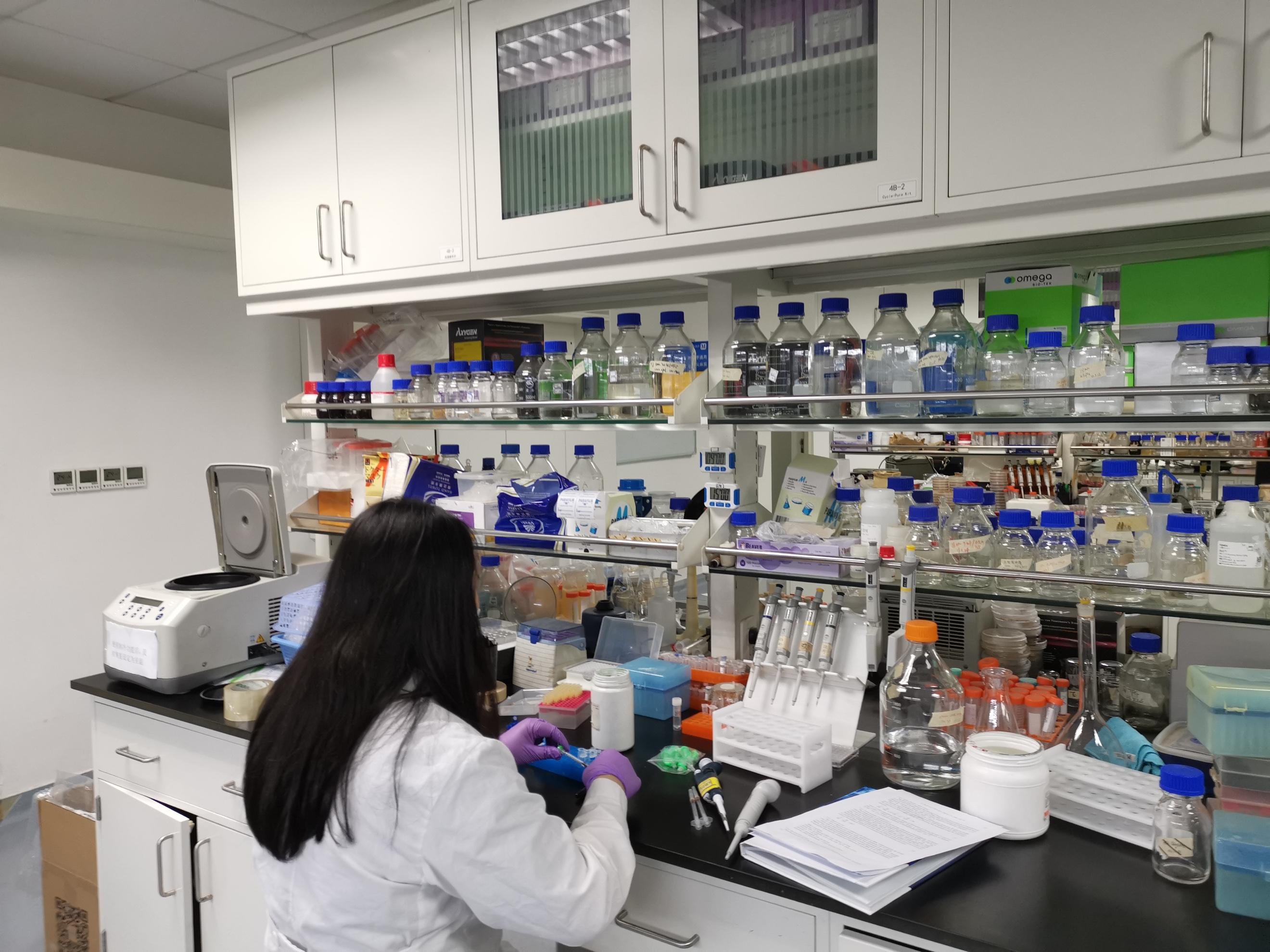 我国科学家在人工合成淀粉方面取得重要进展